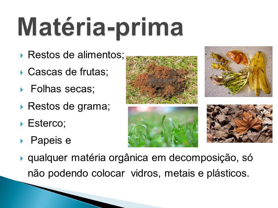 Restos de alimentos; Cascas de frutas; Folhas secas; Restos de grama; Esterco; Papeis e qualquer matéria orgânica em decomposição, só não podendo colo
