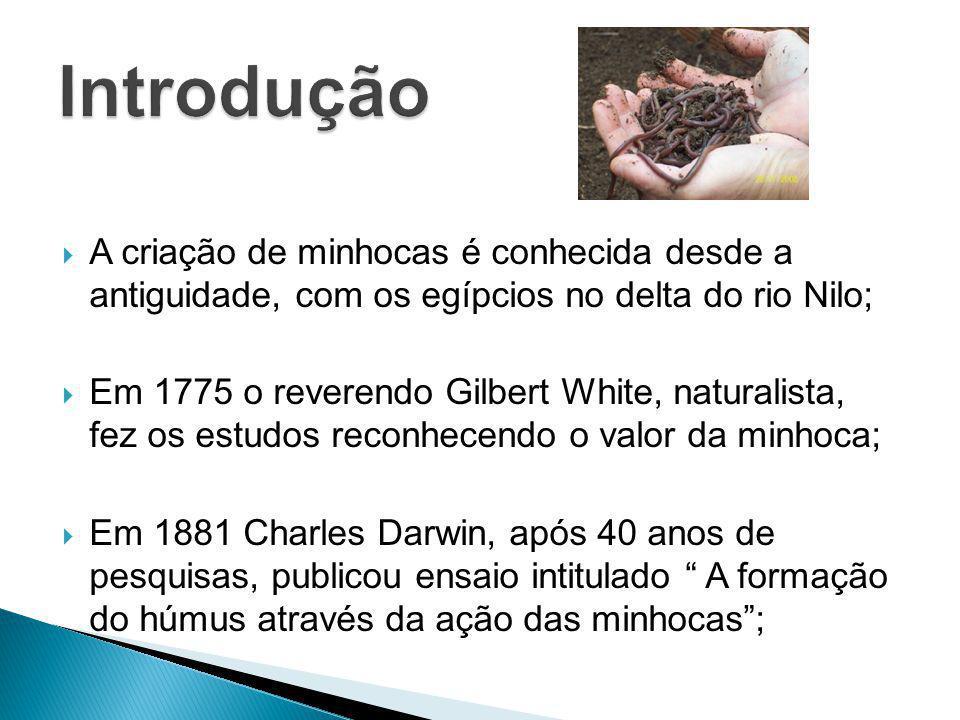 A criação de minhocas é conhecida desde a antiguidade, com os egípcios no delta do rio Nilo; Em 1775 o reverendo Gilbert White, naturalista, fez os es