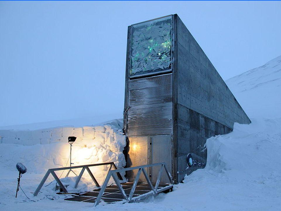A Svalbard International Seed Vault (SISV) Abóbada Internacional de Sementes Svalbard também conhecida como a Arca do Fim do Mundo