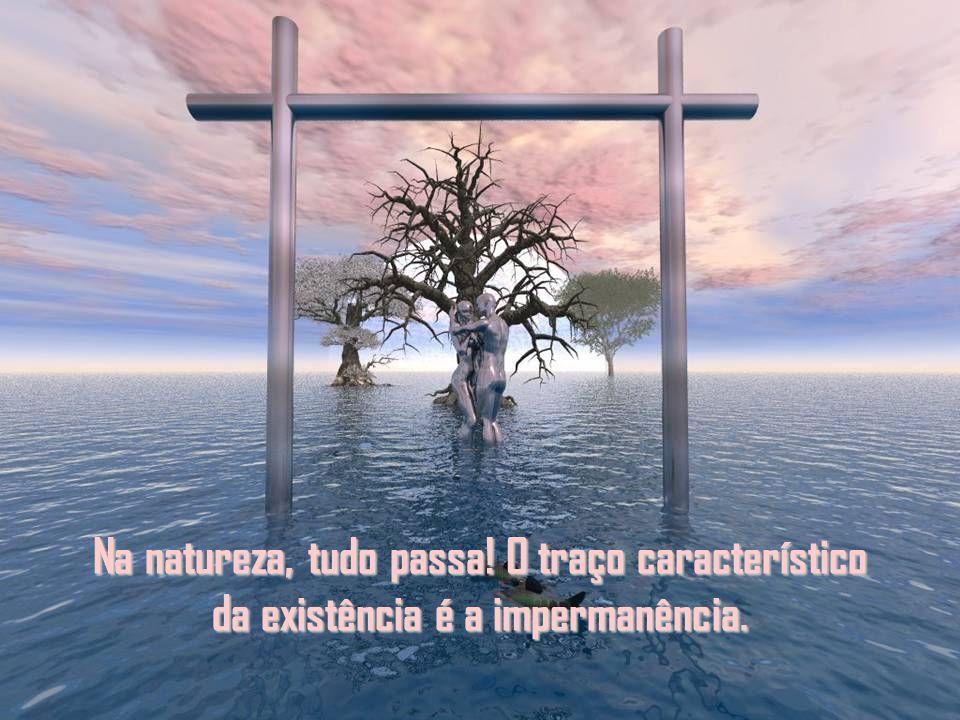 Parece que somos passageiros na eternidade, mas a verdade é outra: somos eternos dentro do temporário. Ou seja, somos o eterno no movimento da vida qu