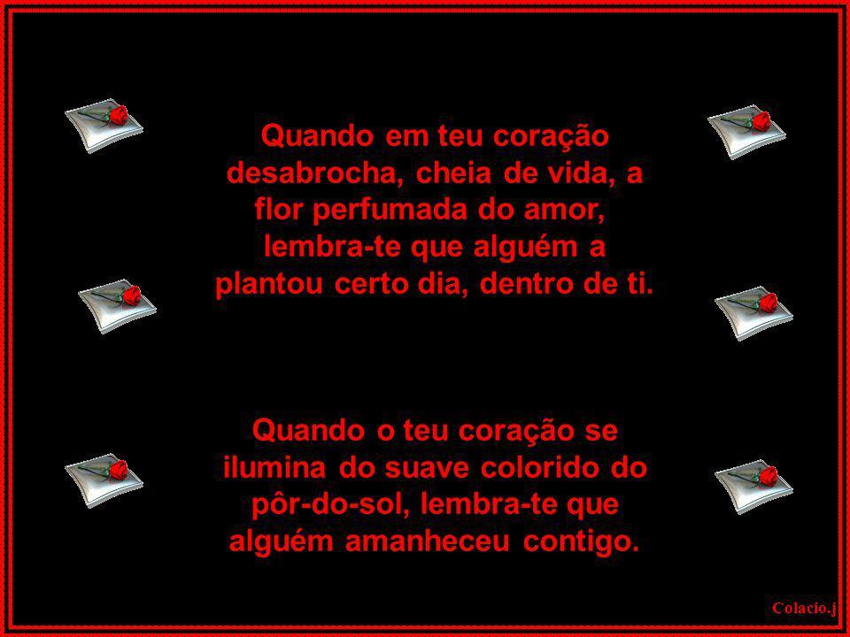 Colacio.j A FLOR DO AMOR Texto de: Lauro Trevisan