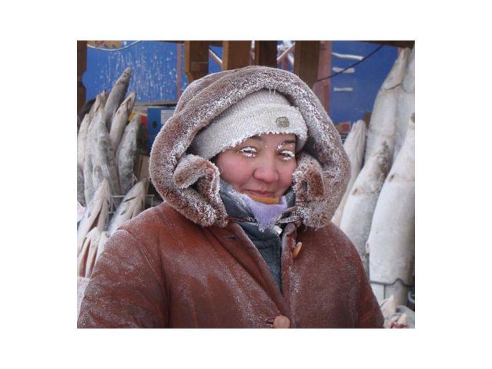 Vou ao mercado, cheio de gente vendendo peixe, porcos e coração de cavalo, tudo congelado.