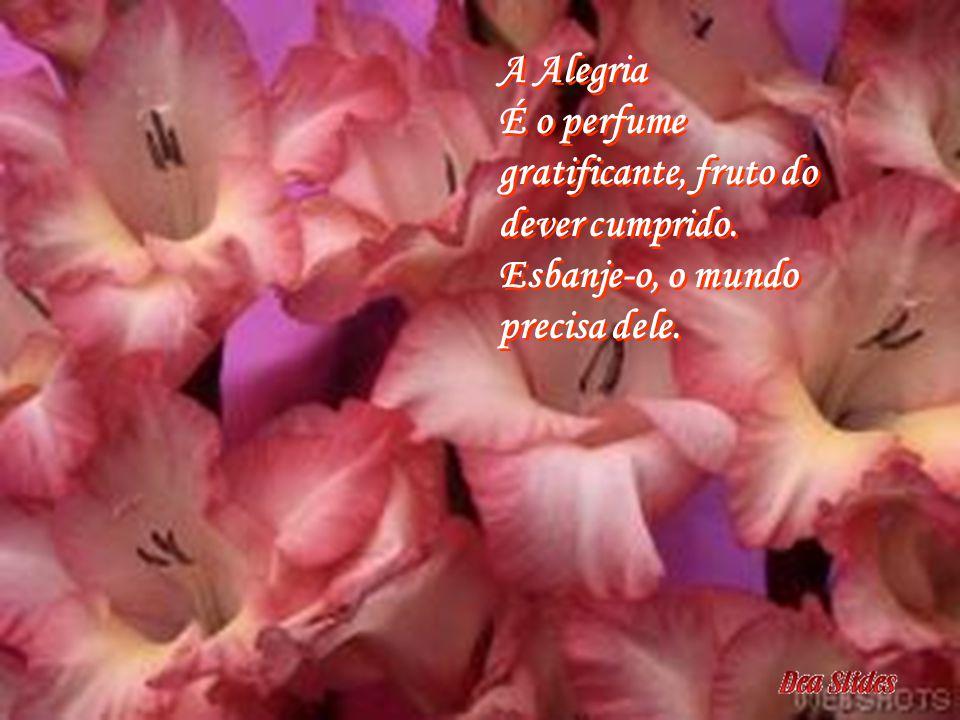 A Bondade É a flor mais atraente do jardim de um coração bem cultivado. Plante estas flores. A Bondade É a flor mais atraente do jardim de um coração
