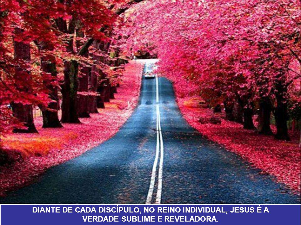 DIANTE DE CADA DISCÍPULO, NO REINO INDIVIDUAL, JESUS É A VERDADE SUBLIME E REVELADORA.
