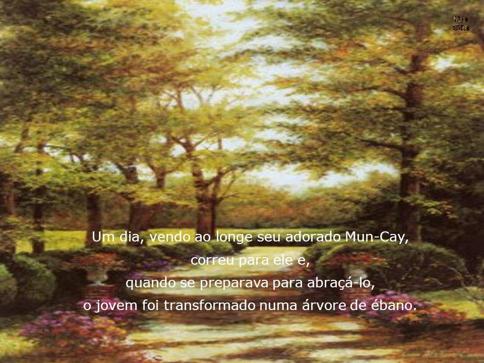 Hoan-Lan, voltou à sua casa, que lhe parecia um cárcere. Saía para os bosques a distrair sua pena, mas sempre em vão.