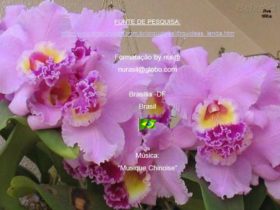 A primeira reação de todos os apaixonados por orquídeas é, sempre, desfazer o equívoco: