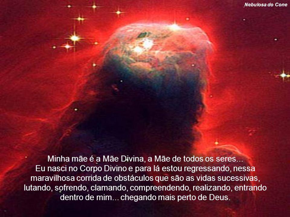 Minha mãe é a Mãe Divina, a Mãe de todos os seres...