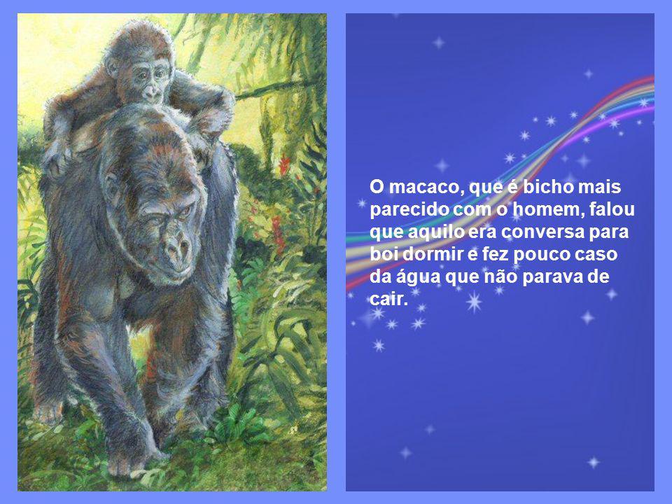 O elefante disse que era impossível esquecer, por causa da sua memória indiscutivelmente grande.