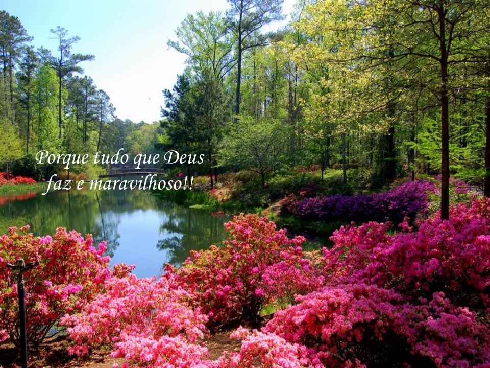 Olhe para o céu e sinta-se envolver pela magia da natureza!