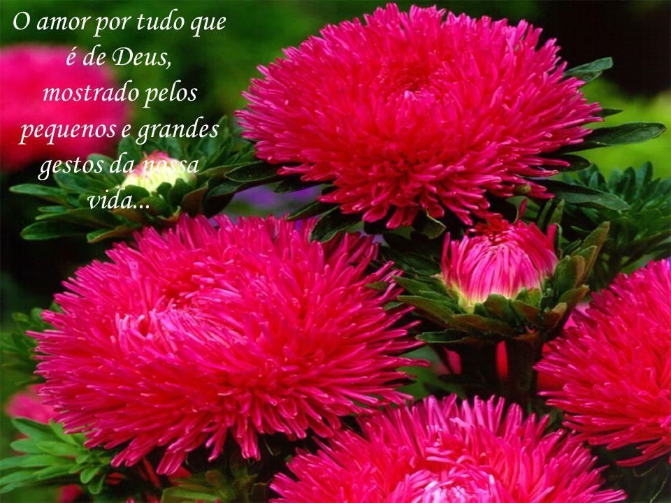 O amor por tudo que é de Deus, mostrado pelos pequenos e grandes gestos da nossa vida...