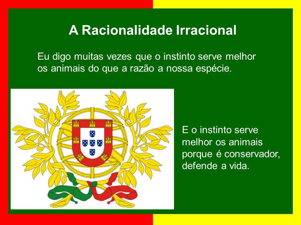 José de Sousa Saramago Foi escritor, argumentista, jornalista, dramaturgo, contista, romancista e poeta português. Nasceu em Portugal em 16 de novembr