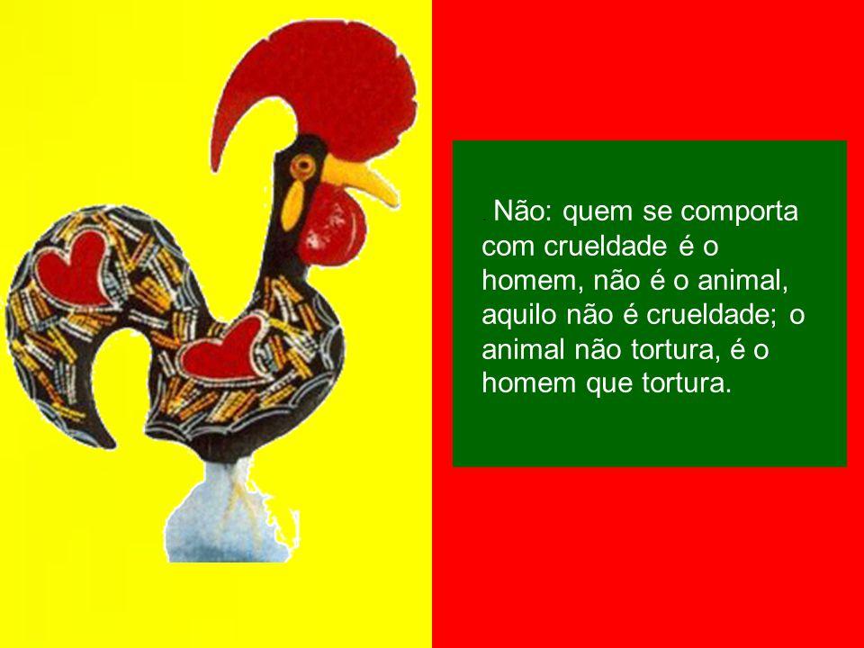 Imagens Internet Google Música Fados de Portugal Formatação Christina Meirelles Neves Texto de José Saramago, in Diálogos com José Saramago