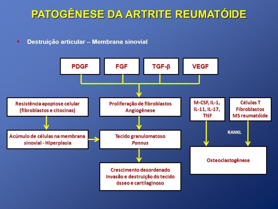 PATOGÊNESE DA ARTRITE REUMATÓIDE Destruição articular – Membrana sinovial TGF-β PDGFFGF Proliferação de fibroblastos Angiogênese Tecido granulomatoso Pannus Crescimento desordenado Invasão e destruição do tecido ósseo e cartilaginoso VEGF Resistência apoptose celular (fibroblastos e citocinas) Acúmulo de células na membrana sinovial - Hiperplasia M-CSF, IL-1, IL-11, IL-17, TNF Osteoclastogênese Células T Fibroblastos MS reumatóide RANKL