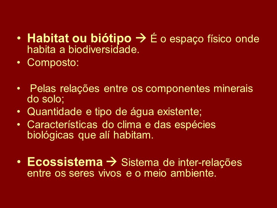 Estrutura básica do Ecossistema: MEIO AMBIENTE SOL PRODUTORES DECOMPOSITORES CONSUMIDORES