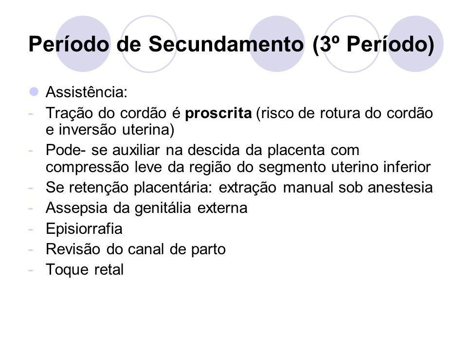 Período de Secundamento (3º Período) Assistência: -Tração do cordão é proscrita (risco de rotura do cordão e inversão uterina) -Pode- se auxiliar na d
