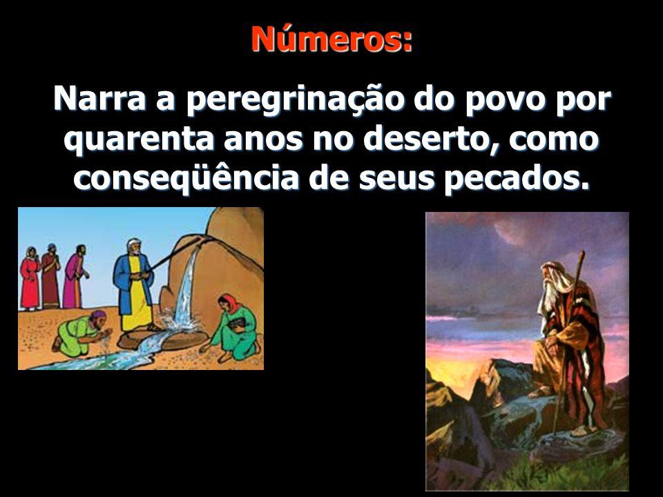 Números: Narra a peregrinação do povo por quarenta anos no deserto, como conseqüência de seus pecados.