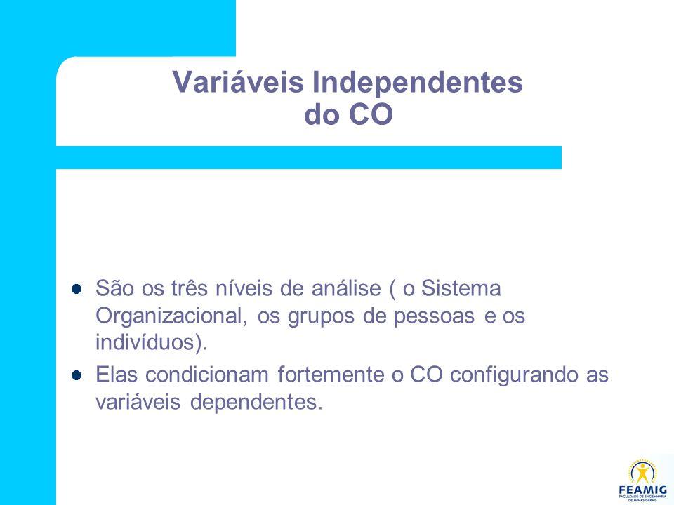 Variáveis Independentes do CO São os três níveis de análise ( o Sistema Organizacional, os grupos de pessoas e os indivíduos). Elas condicionam fortem