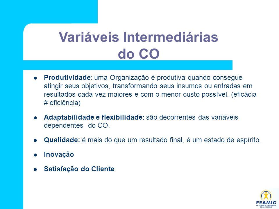 Variáveis Intermediárias do CO Produtividade: uma Organização é produtiva quando consegue atingir seus objetivos, transformando seus insumos ou entrad