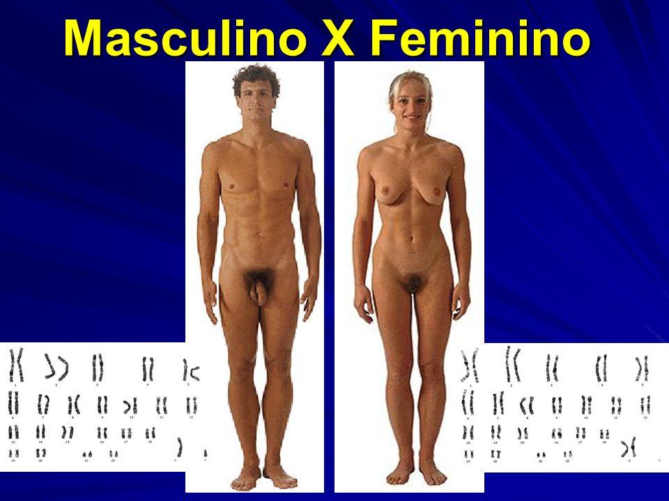 Muitos hermafroditas verdadeiros podem não apresentar ambigüidade da genitália externa.