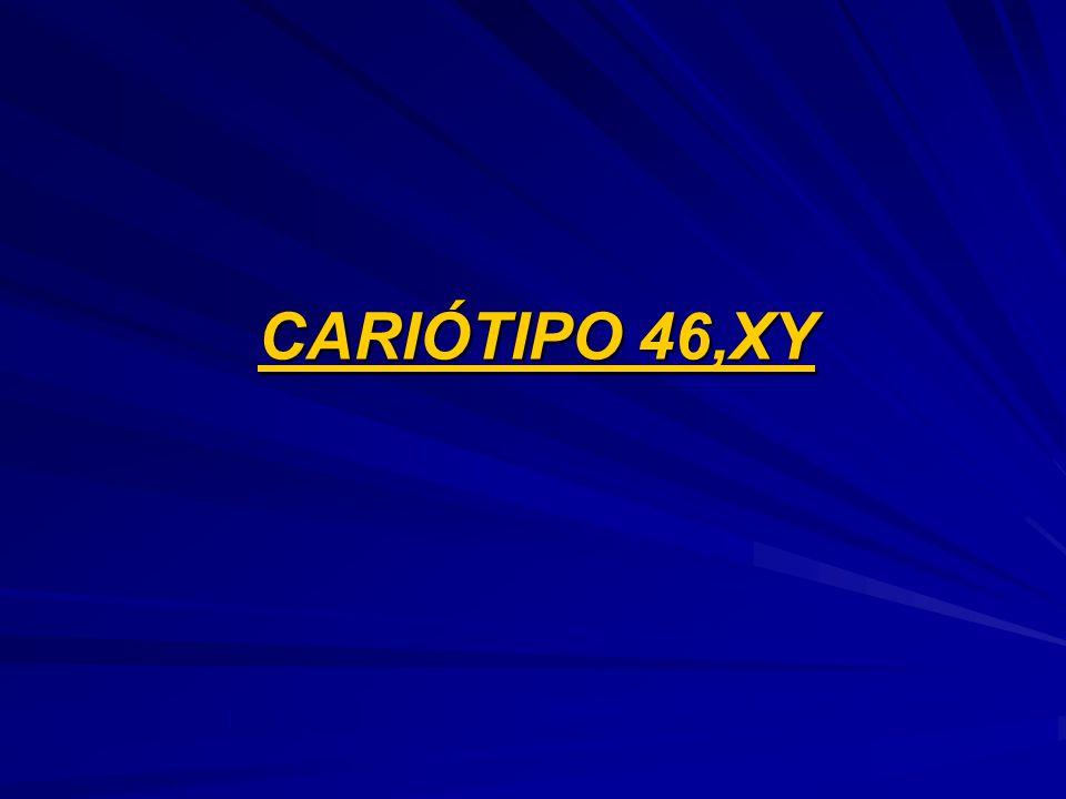CARIÓTIPO 46,XY