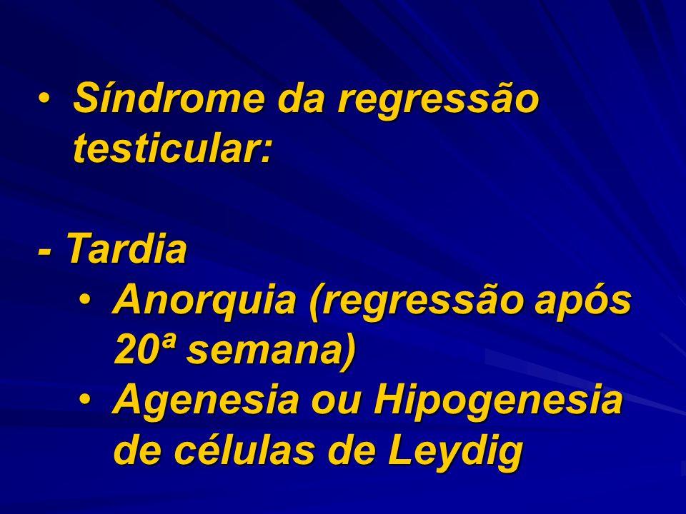 Síndrome da regressão testicular:Síndrome da regressão testicular: - Tardia Anorquia (regressão após 20ª semana)Anorquia (regressão após 20ª semana) A