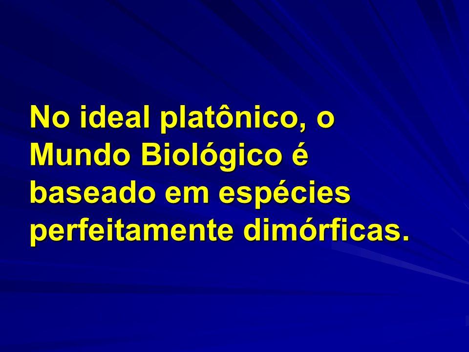 Todos aqueles que nascem fora do molde dimórfico de Platão são ditos INTERSSEXUAIS.