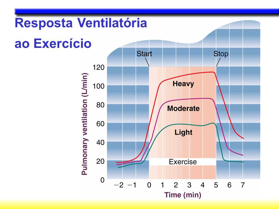 Como a ventilação aumenta antes do exercício.