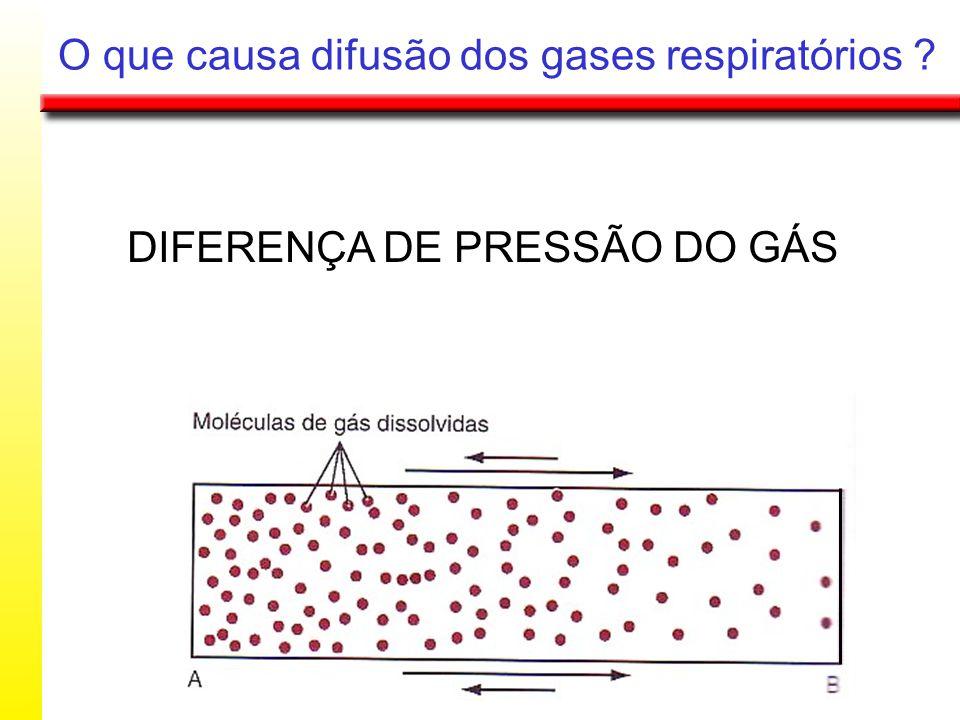 O que causa difusão dos gases respiratórios ? DIFERENÇA DE PRESSÃO DO GÁS