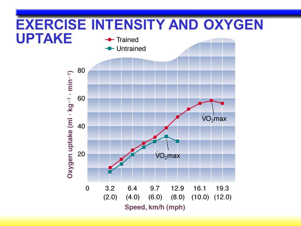 Como a ventilação aumenta durante o exercício.