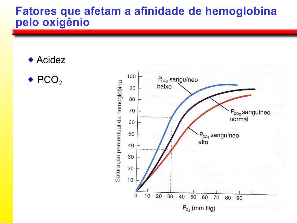 Fatores que afetam a afinidade de hemoglobina pelo oxigênio Acidez PCO 2