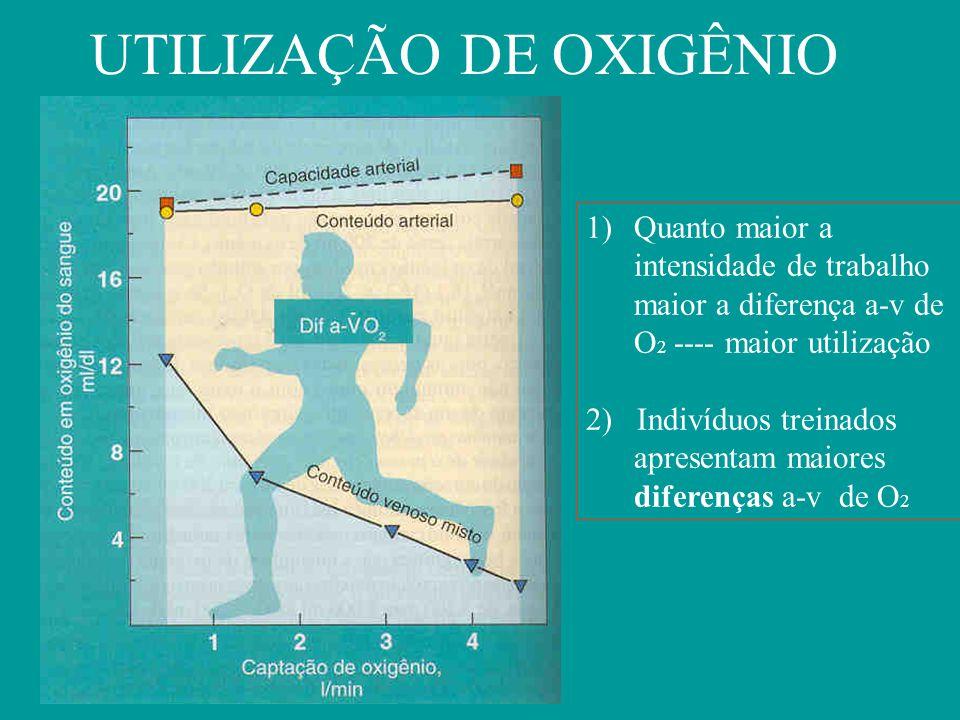 UTILIZAÇÃO DE OXIGÊNIO 1)Quanto maior a intensidade de trabalho maior a diferença a-v de O 2 ---- maior utilização 2) Indivíduos treinados apresentam maiores diferenças a-v de O 2