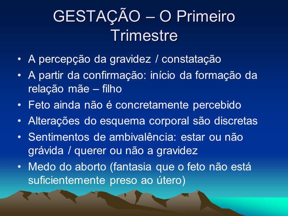 GESTAÇÃO – O Primeiro Trimestre A percepção da gravidez / constatação A partir da confirmação: início da formação da relação mãe – filho Feto ainda nã
