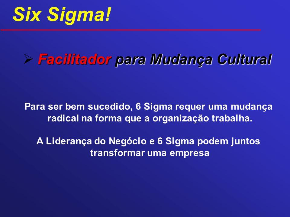 Facilitador para Mudança Cultural Para ser bem sucedido, 6 Sigma requer uma mudança radical na forma que a organização trabalha. A Liderança do Negóci