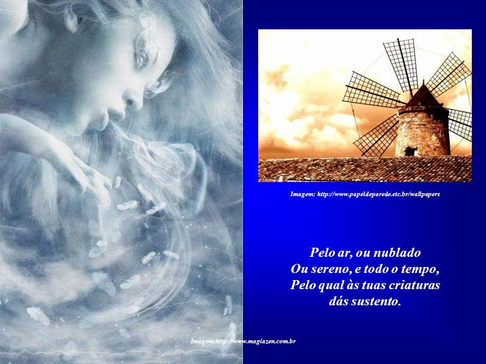 Imagem:http://www.magiazen.com.br O ELEMENTO AR Louvado sejas, meu Senhor, Pelo irmão Vento, Imagem: Carmen Thiago