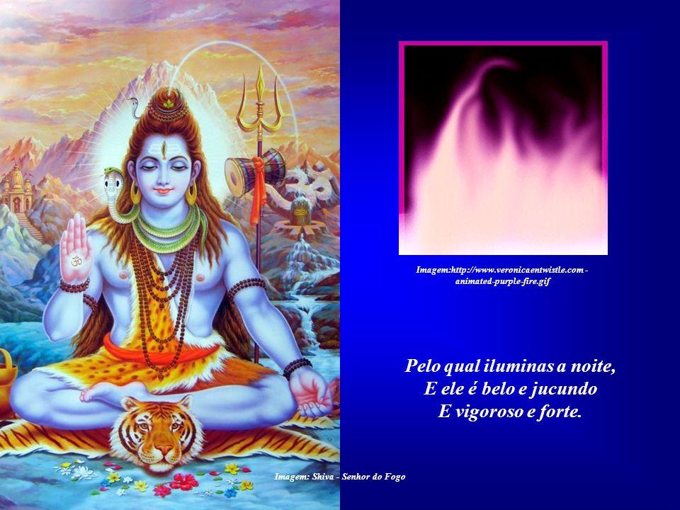 O ELEMENTO FOGO Louvado sejas, meu Senhor, Pelo irmão Fogo Imagem:http://www.veronicaentwistle.com - animated-purple-fire.gif Imagem: Shiva - Senhor d