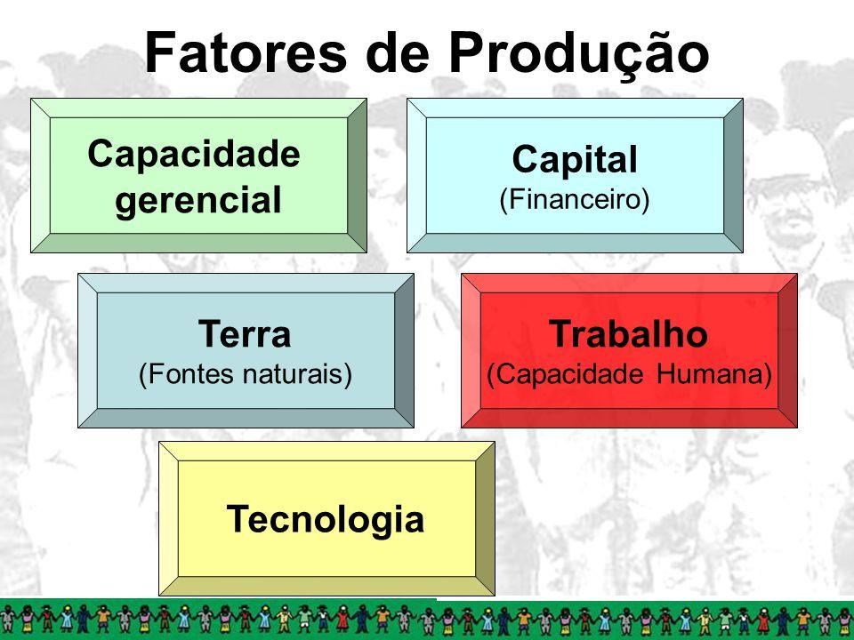 Fatores de Produção Terra (Fontes naturais) Tecnologia Capital (Financeiro) Trabalho (Capacidade Humana) Capacidade gerencial
