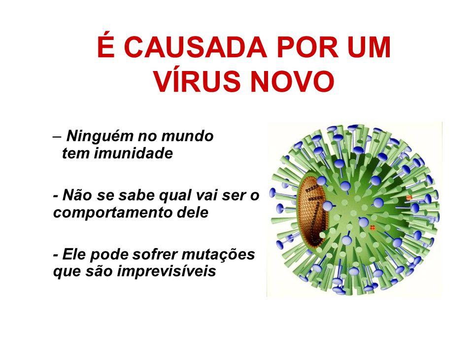 É CAUSADA POR UM VÍRUS NOVO – Ninguém no mundo tem imunidade - Não se sabe qual vai ser o comportamento dele - Ele pode sofrer mutações que são imprev