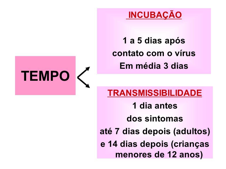 INCUBAÇÃO 1 a 5 dias após contato com o vírus Em média 3 dias TRANSMISSIBILIDADE 1 dia antes dos sintomas até 7 dias depois (adultos) e 14 dias depois