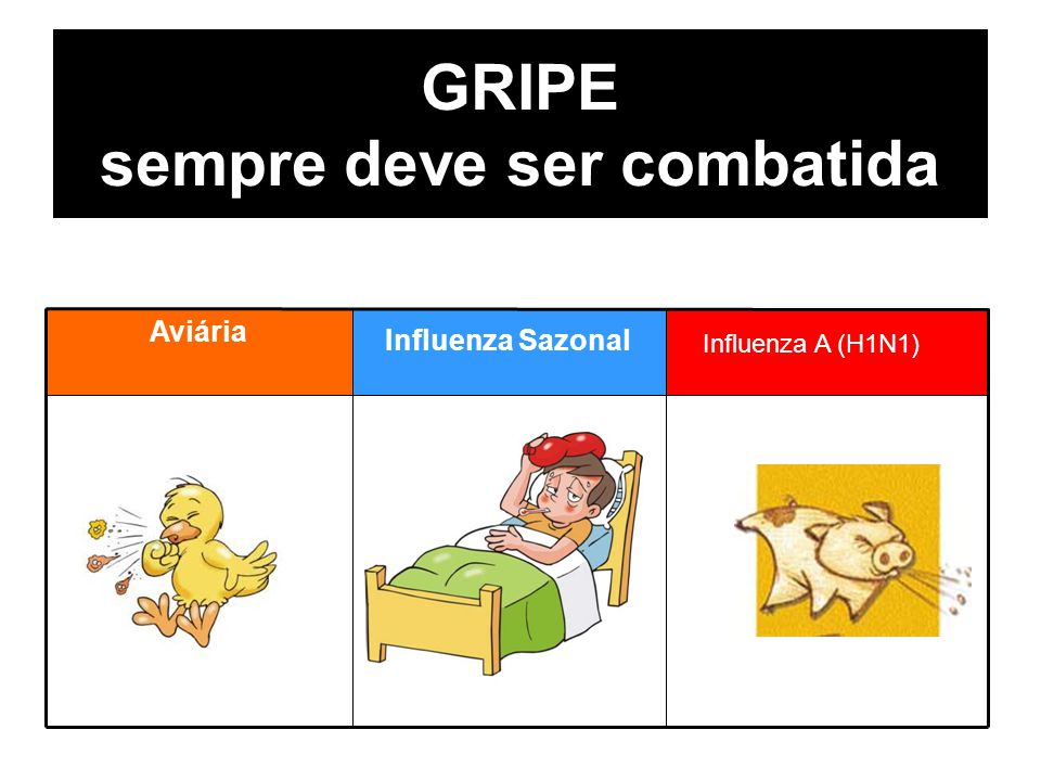 GRIPE sempre deve ser combatida Aviária Estacional Influenza Sazonal Influenza A (H1N1)
