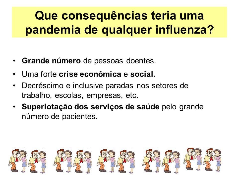 Que consequências teria uma pandemia de qualquer influenza? Grande número de pessoas doentes. Uma forte crise econômica e social. Decréscimo e inclusi