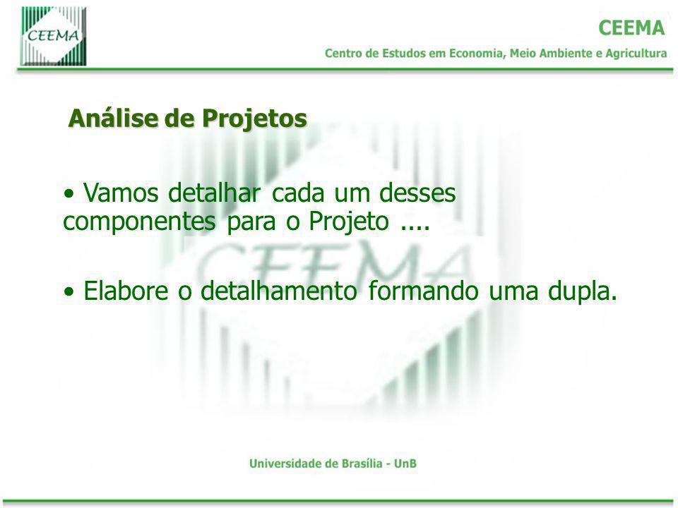 Análise de Projetos Vamos detalhar cada um desses componentes para o Projeto.... Elabore o detalhamento formando uma dupla.