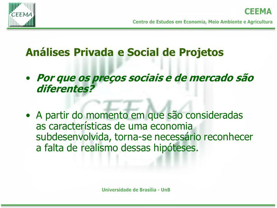 Por que os preços sociais e de mercado são diferentes? A partir do momento em que são consideradas as características de uma economia subdesenvolvida,