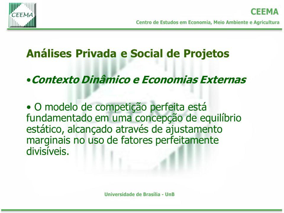 Contexto Dinâmico e Economias Externas O modelo de competição perfeita está fundamentado em uma concepção de equilíbrio estático, alcançado através de