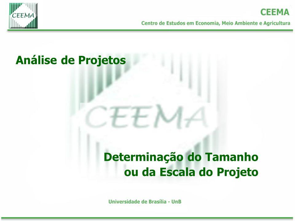 Análise de Projetos Determinação do Tamanho ou da Escala do Projeto