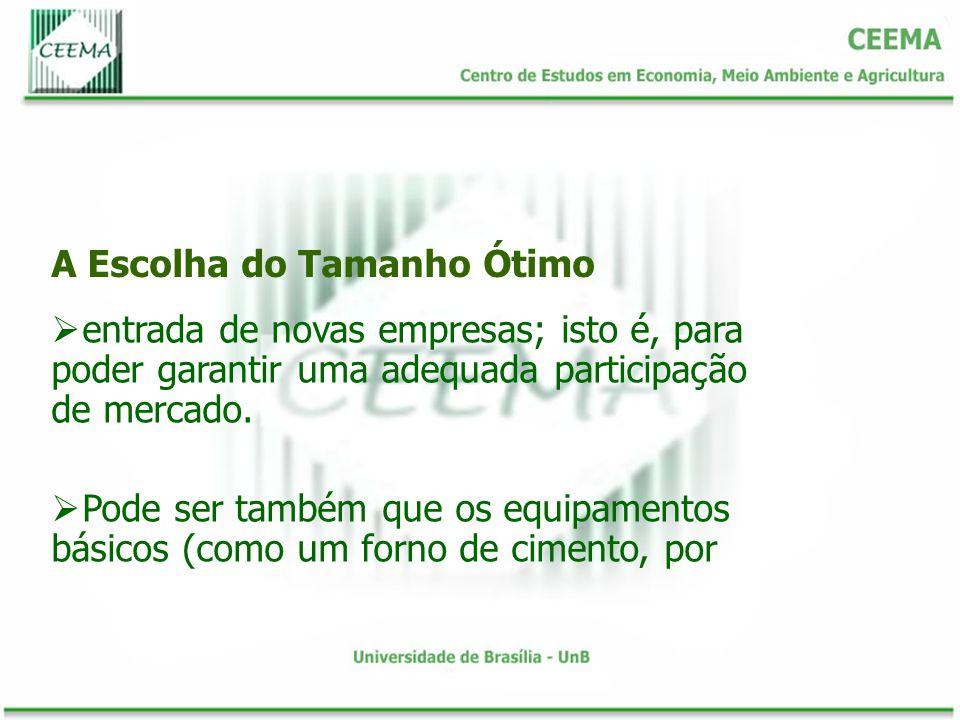 A Escolha do Tamanho Ótimo entrada de novas empresas; isto é, para poder garantir uma adequada participação de mercado.