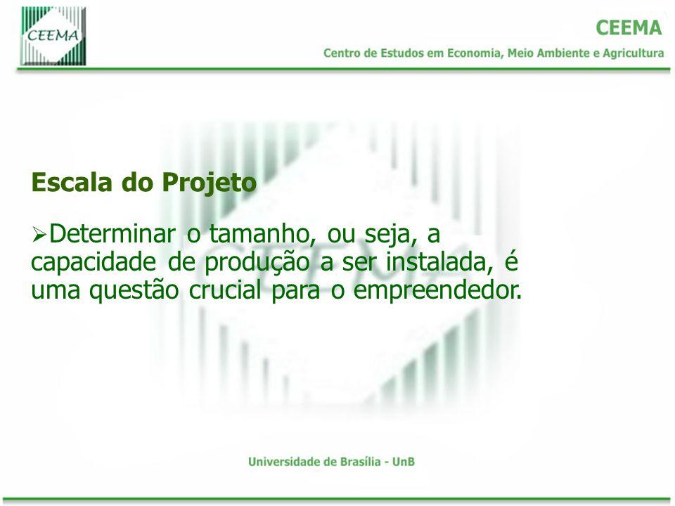 Tamanho e Mercado O mercado a ser atendido pela empresa é outro elemento de relevância para a determinação do tamanho do projeto.