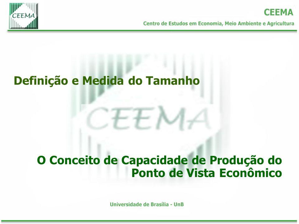 Definição e Medida do Tamanho O Conceito de Capacidade de Produção do Ponto de Vista Econômico