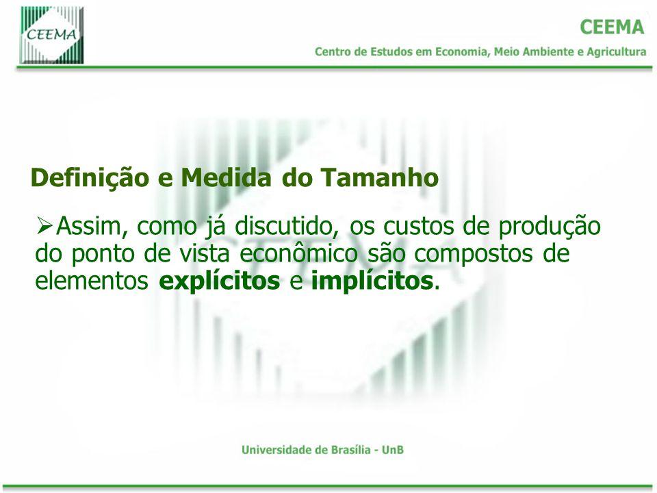 Definição e Medida do Tamanho Assim, como já discutido, os custos de produção do ponto de vista econômico são compostos de elementos explícitos e implícitos.