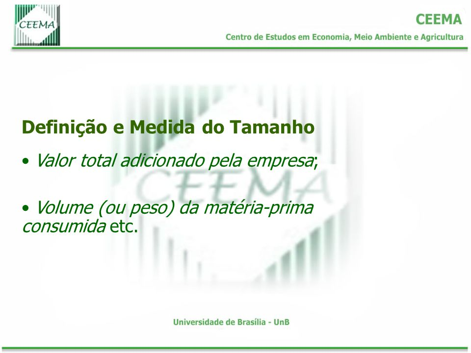 Definição e Medida do Tamanho Valor total adicionado pela empresa; Volume (ou peso) da matéria-prima consumida etc.