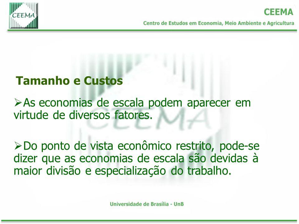 Tamanho e Custos As economias de escala podem aparecer em virtude de diversos fatores. Do ponto de vista econômico restrito, pode-se dizer que as econ